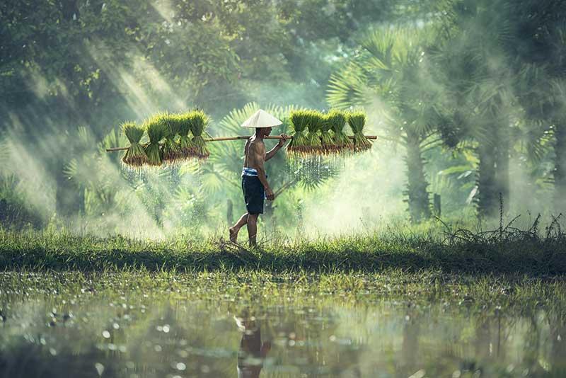 The Rainy Season in Cambodia   Sovanna River Cruises